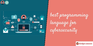 best programming language for cybersecurity