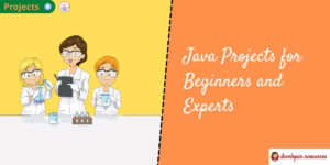 java projects for beginners and experts