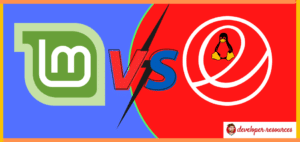 Linux Mint Vs. Elementary OS 1 - Home page