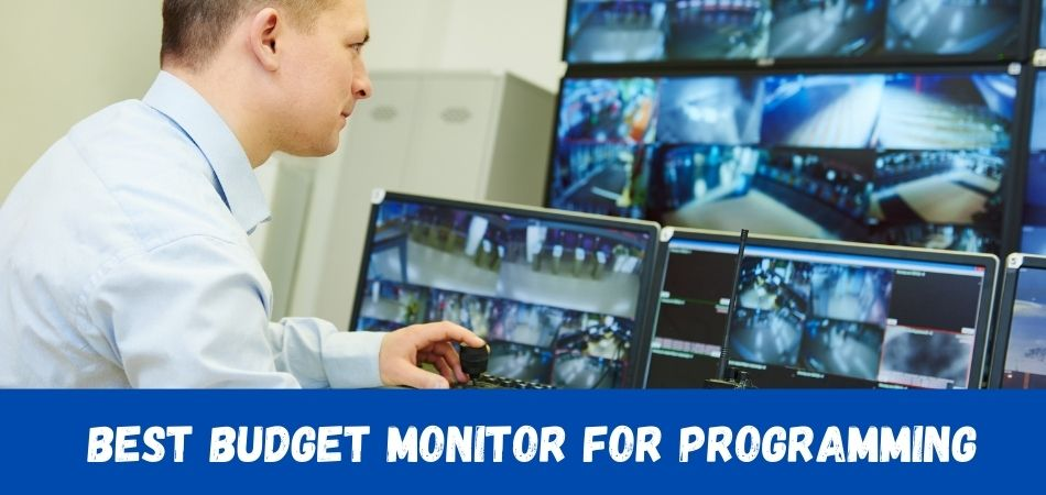 Best Budget Monitor For Programming - 11 Best Budget Monitors for Programming: Top selling in 2021